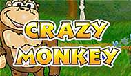 Crazy monkey game slot
